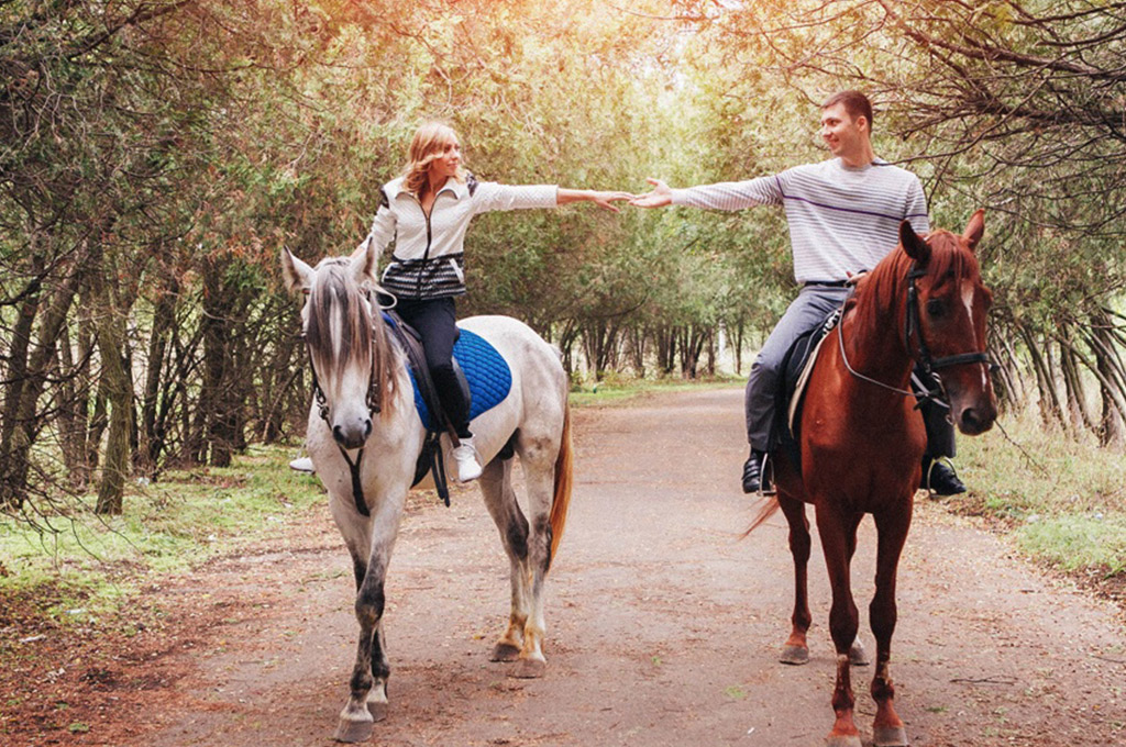 Horse Riding in Centennial Parklands