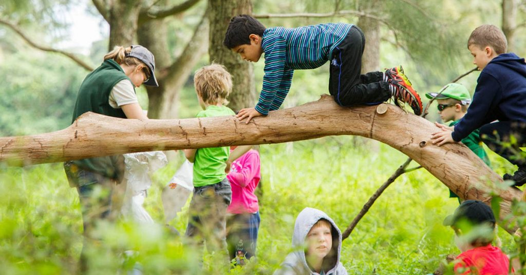 Spring OOSH programs for Vacation Care at Centennial Parklands